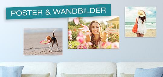 Poster & Wandbilder